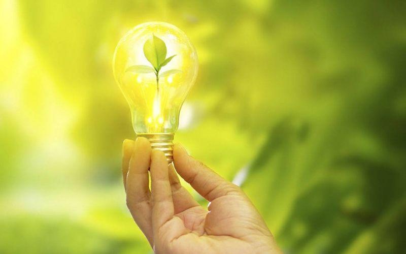 Design Sem Nome (29) - JPN Assessoria Contábil - O que é um negócio sustentável?